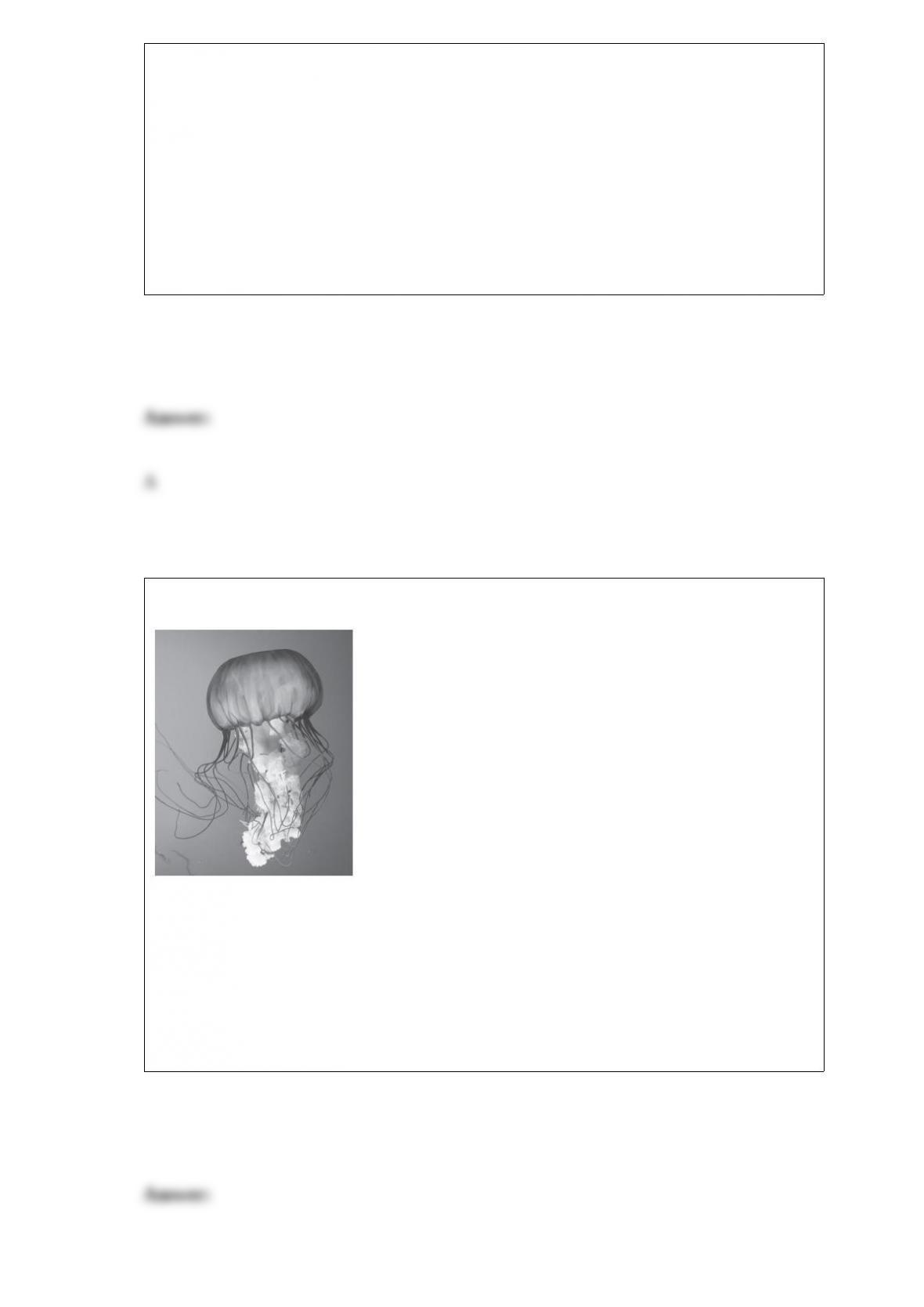 BIOL Coursepaper